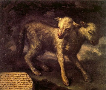 Two-headed lamb, painted by Bartolomeo Bimbi, 1648-1730